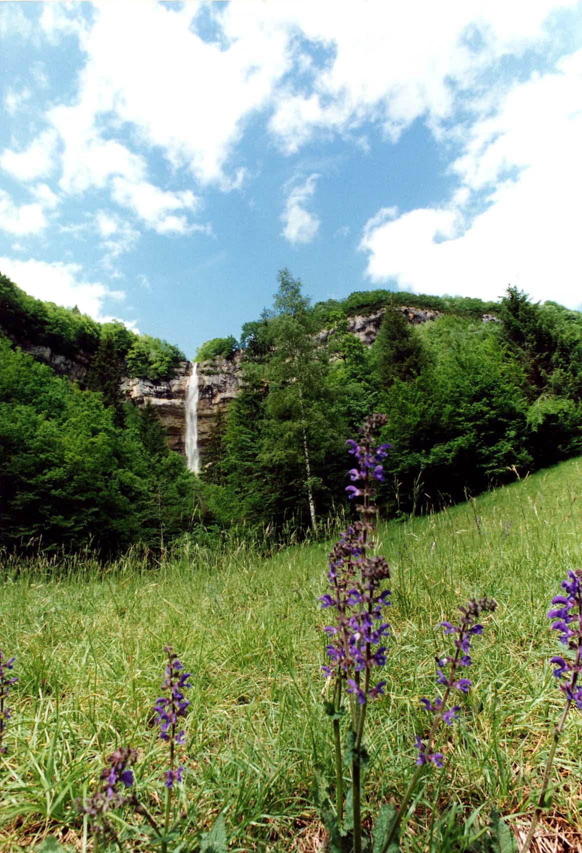 Office de tourisme saint la ville grandeur nature - Office de tourisme haut jura saint claude ...