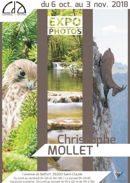 Expo C. Mollet - Affiche