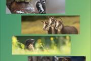 Exposition de l'Association Jurassienne des Naturalistes Photographes <br/>du 3/12 au 28/01