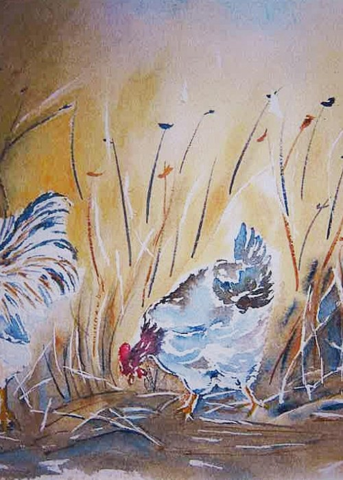 Le coq et ses deux poules - aquarelle © A. Aymard
