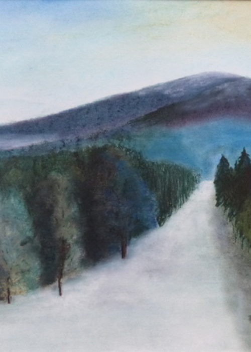 2019-35-Paysage hivernal-Pastel-65x50 © Pascal Mermet